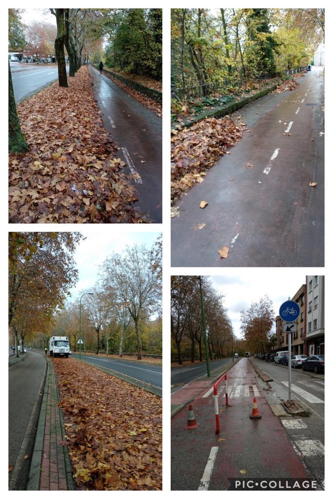 aceras bici limpias de hojas