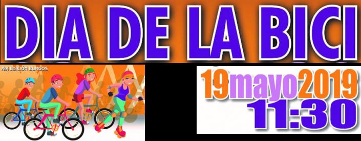 19 de mayo de 2019 a las 11:30