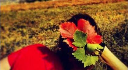 tocado de cabello con hojas de vid