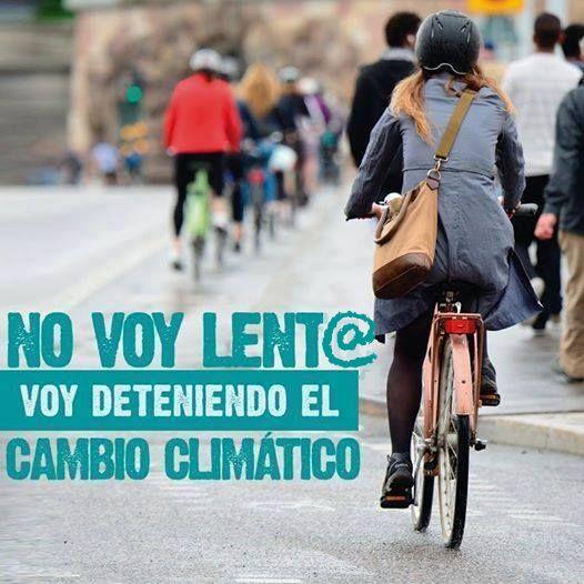 Grupo de ciclistas de espaldas por calle de ciudad